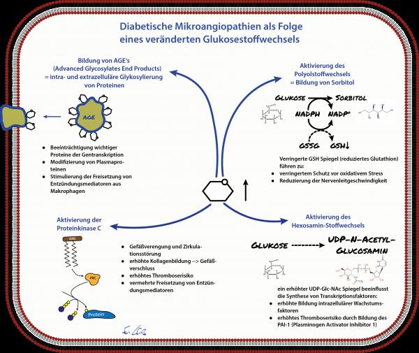 mikroangiopathie_2
